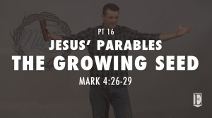16 THE GROWING SEED - JESUS' PARABLES